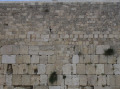 Western wall in Jerusalem1